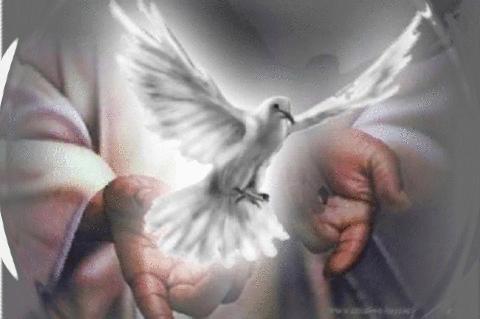 Resultado de imagen de fotos del Espíritu santo