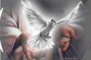 Espiritu Santo