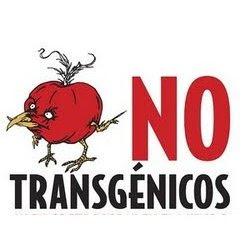 Alimentos Transgénicos Top 10 que debe evitar,Especialmente en Norteamerica.